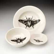 Soup Bowl: Goliath Beetle Open Wing