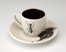 Espresso Cup and Saucer: Ant