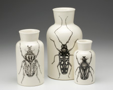 Set of 3 Jars: Beetles