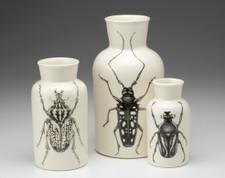 Set of 3 Jars: Beetles