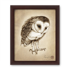 Prints : Barn Owl 8X10 Framed
