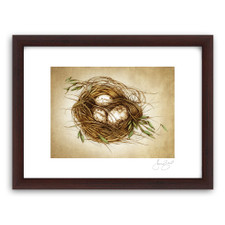 Prints : Quail Nest, 11X14 Framed