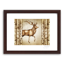 Prints : Red Buck, 11X14 Framed