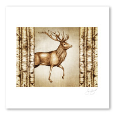 Prints : Red Buck, 11X14 Unframed