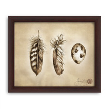 Prints : Quail Feathers and Egg 8X10 Framed