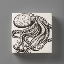Wall Box: Octopus