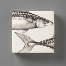 Wall Box: Mackerel