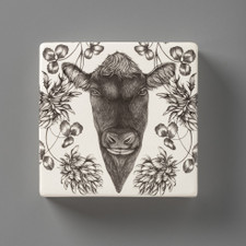 Wall Box: Angus Bull