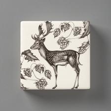 Wall Box: Fallow Buck