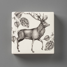Wall Box: Red Buck