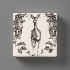 Wall Box: Fallow Doe
