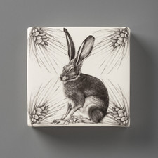 Wall Box: Sitting Hare