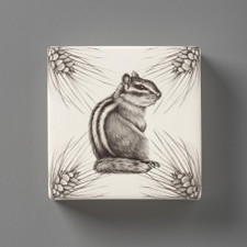 Wall Box: Chipmunk #3