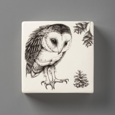 Wall Box: Barn Owl