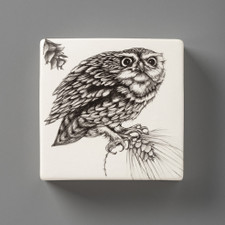 Wall Box: Screech Owl #2