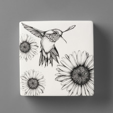 Wall Box: Hummingbird #2