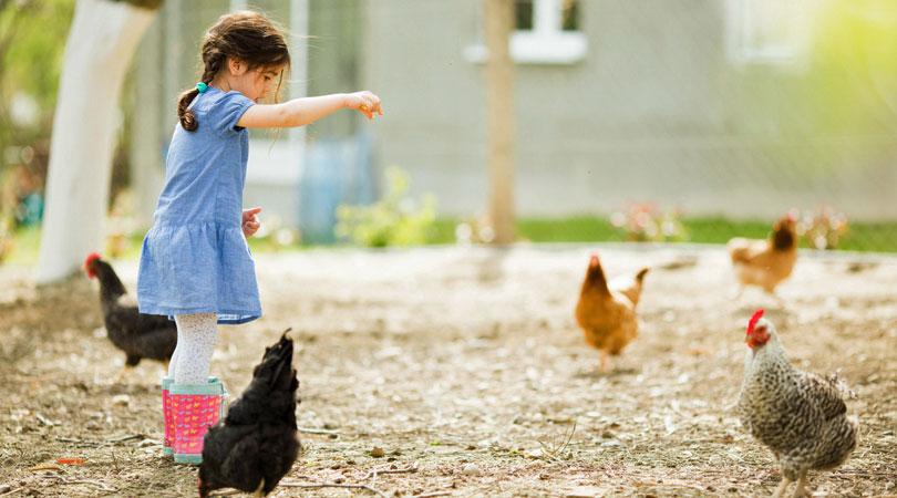 children-with-chicken.jpg