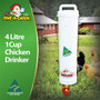 Chicken Waterer for up to 6 Hens