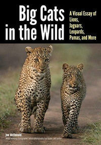 Big Cats in The Wild (A Visual Essay of Lions, Jaguars, Leopards, Pumas, and More) by Joe McDonald, 9781682033241