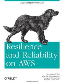 Resilience and Reliability on AWS (Engineering at Cloud Scale) by Jurg van Vliet, Flavia Paganelli, Jasper Geurtsen, 9781449339197
