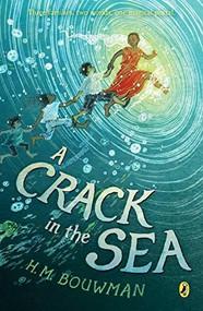 A Crack in the Sea - 9780399545214 by H. M. Bouwman, Yuko Shimizu, 9780399545214