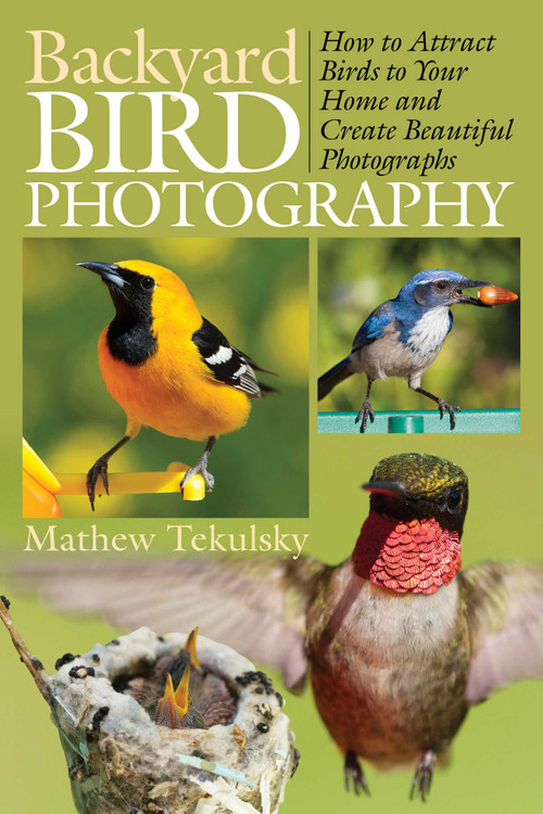 Backyard Bird Photography (How to Attract Birds to Your Home and Create Beautiful Photographs) by Mathew Tekulsky, 9781628737400