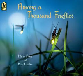 Among a Thousand Fireflies - 9781536205626 by Helen Frost, Rick Lieder, 9781536205626