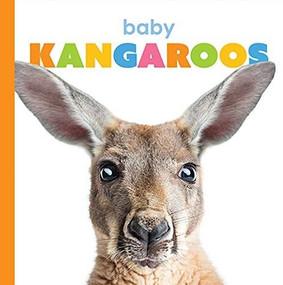 Baby Kangaroos by Kate Riggs, 9781628328127