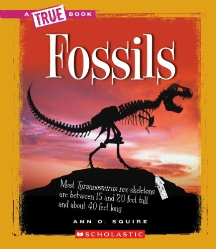 Fossils (True Book: Earth Science) by Ann O. Squire, 9780531262504