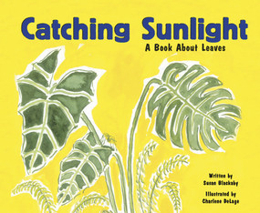 Catching Sunlight (A Book About Leaves) by Susan Blackaby, Charlene Delage, 9781404803879