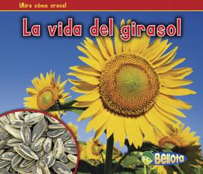 La vida del girasol by Nancy Dickmann, 9781432952891