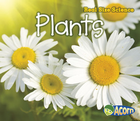 Plants (Real Size Science) - 9781432978877 by Rebecca Rissman, 9781432978877