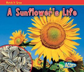 A Sunflower's Life - 9781432941536 by Nancy Dickmann, 9781432941536
