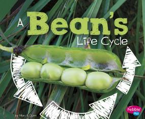 A Bean's Life Cycle - 9781515770572 by Mary R. Dunn, 9781515770572