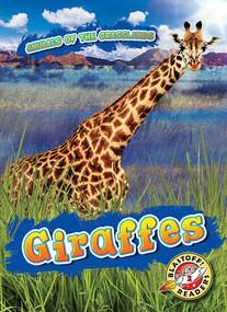 Giraffes - 9781644870570 by Kaitlyn Duling, 9781644870570