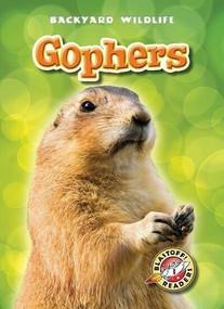 Gophers by Derek Zobel, 9781600145971
