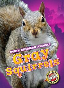 Gray Squirrels - 9781626171879 by Christina Leaf, 9781626171879