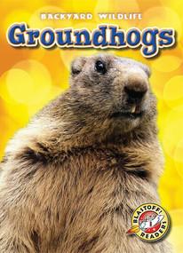 Groundhogs - 9781626170575 by Kari Schuetz, 9781626170575