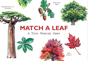 Match a Leaf (A Tree Memory Game) (Miniature Edition) by Tony Kirkham, Holly Exley, 9781786272287