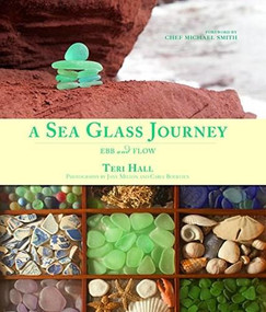 A Sea Glass Journey (Ebb and Flow) - 9781771083126 by Teri Hall, 9781771083126