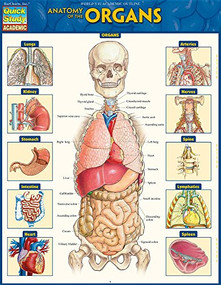 Anatomy of the Organs (QuickStudy Laminated Reference Guide) by Perez, Vincent, 9781423234630