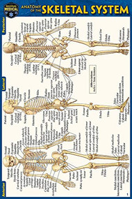 Anatomy of the Skeletal System (Pocket-Sized Edition - 4x6 inches) (Miniature Edition) by Perez, Vincent, 9781423242758