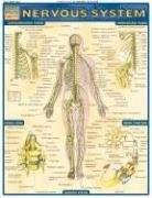 Nervous System by Perez, Vincent, 9781572224988