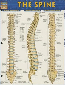 The Spine by Perez, Vincent, 9781423220237