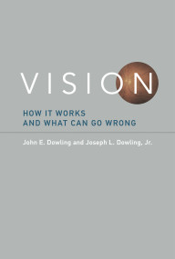 Vision (How It Works and What Can Go Wrong) by John E. Dowling, Joseph L. Dowling, Jr., 9780262536622
