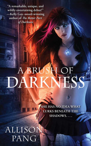 A Brush of Darkness by Allison Pang, 9781501157622