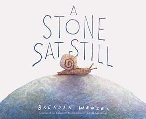 A Stone Sat Still by Brendan Wenzel, 9781452173184
