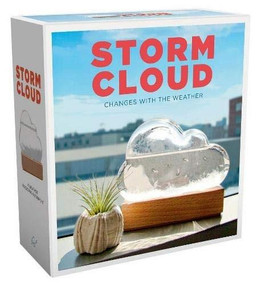 Storm Cloud (A Weather Predicting Instrument (Weather Predictor, Fun Cloud-Shaped Barometer)) by Bitten, 9781452177083