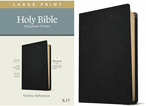 KJV Large Print Thinline Reference Bible, Filament Enabled Edition (Red Letter, Genuine Leather, Black), 9781496447234