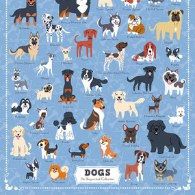 Illustrated Dogs, 653341298102